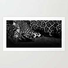 Sleeping Jaguar Art Print