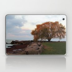 Edgewater Park Laptop & iPad Skin