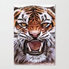 Roar Tiger 914 Canvas Print