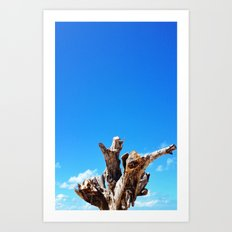 Trunk Tree Art Print