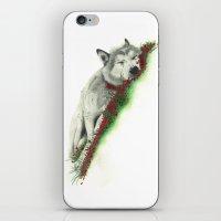 Wolf. iPhone & iPod Skin