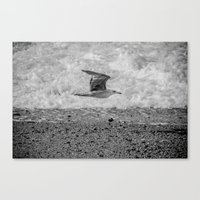 Arrival of the Birds # 1 Canvas Print