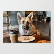 Coffee With The Pup Canvas Print
