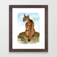 Iberian Lynx Watercolor Framed Art Print