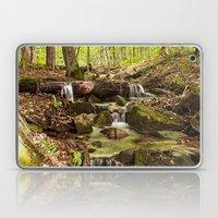 a little stream through the woods Laptop & iPad Skin