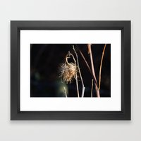 The Burr Framed Art Print