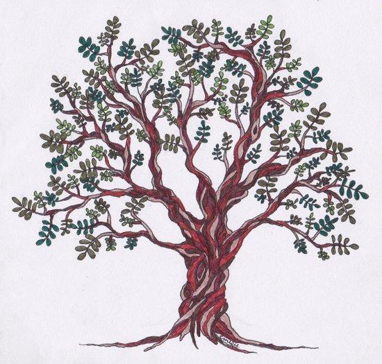 Olive Tree (White) Art Print