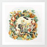 Skull & Fynbos Art Print