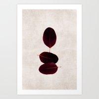 Three Of A Kind 2 Art Print