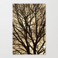 Baum Canvas Print