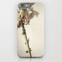 Forgotten iPhone 6 Slim Case
