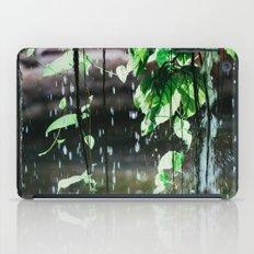 Behind A Waterfall iPad Case