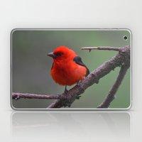 Scarlet Tanager - A Natu… Laptop & iPad Skin