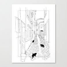 ARA Canvas Print