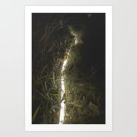 Traces of darkness Art Print