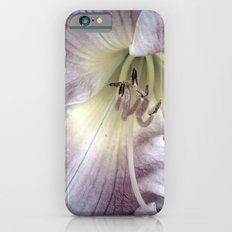 Pink Lily Close Up iPhone 6 Slim Case