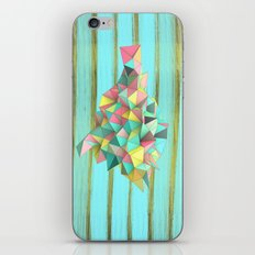 Origami II iPhone & iPod Skin