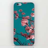 Cotton Candy Dreams iPhone & iPod Skin
