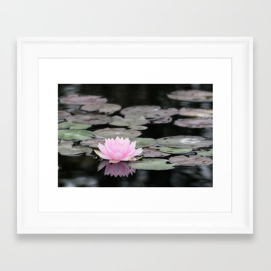 The Lily Pad Framed Art Print