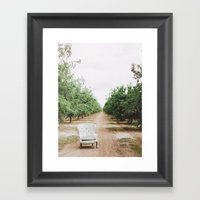 Chair In The Orchard Framed Art Print