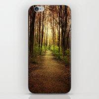 Woodland Wander iPhone & iPod Skin