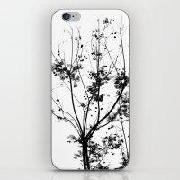 The Grow. iPhone & iPod Skin