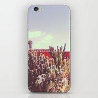Cacti II iPhone & iPod Skin