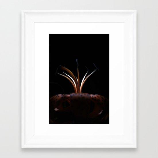 The Night Garden Framed Art Print