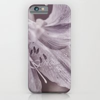iPhone & iPod Case featuring Petite by Charlene McCoy