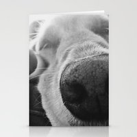 Dog 3 Stationery Cards