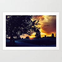 Sunset: City Park, Denver Art Print
