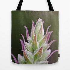 Prickley Pastels Tote Bag
