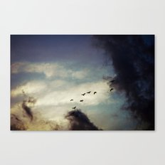 For Love of Sky Canvas Print