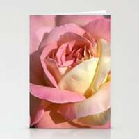 Pretty pink rose garden flower. Floral nature photography.   Stationery Cards