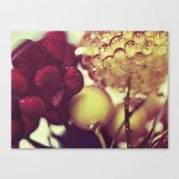 :: berries :: Canvas Print