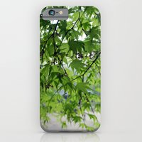 secret garden 24 iPhone 6 Slim Case