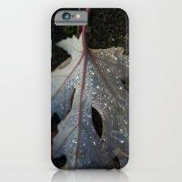 Maple Leaf iPhone 6 Slim Case