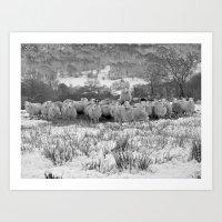 Sheep On The Brecon Beac… Art Print