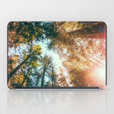 California Redwoods Sun-rays and Sky iPad Case
