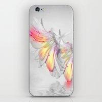 Gerbera Style iPhone & iPod Skin