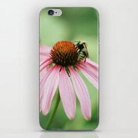 Summer memories iPhone & iPod Skin