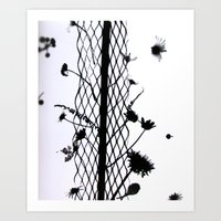 Fence And The Flower Art Print
