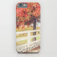 Autumn at the Orchard iPhone 6 Slim Case