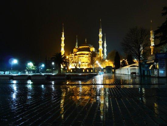 Istanbul night (Turkey 2013) Art Print