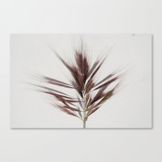 grass2 Canvas Print