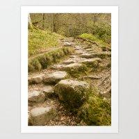 Stone path Art Print