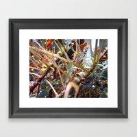Dragon Fight    [PLANTS]… Framed Art Print