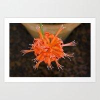 Abstract Orange Art Print