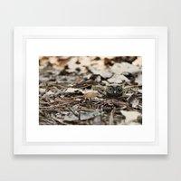 tiny things Framed Art Print