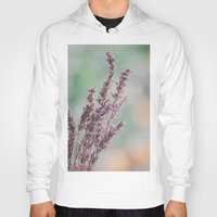 Lavender by the window Hoody